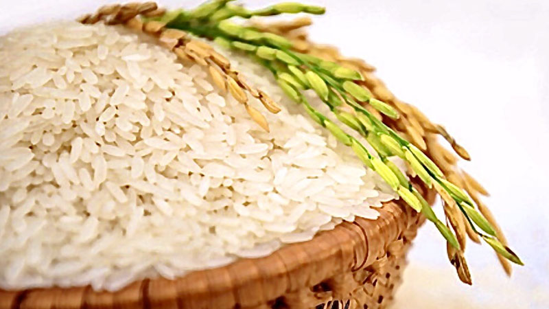 Gạo Jasmine là gì?