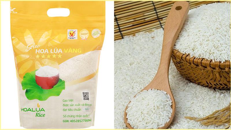 Gạo Hoa Lúa vàng