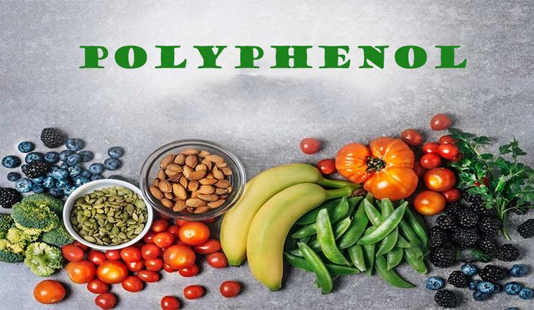 Polyphenol là gì? Vì sao cơ thể chúng ta cần polyphenol?