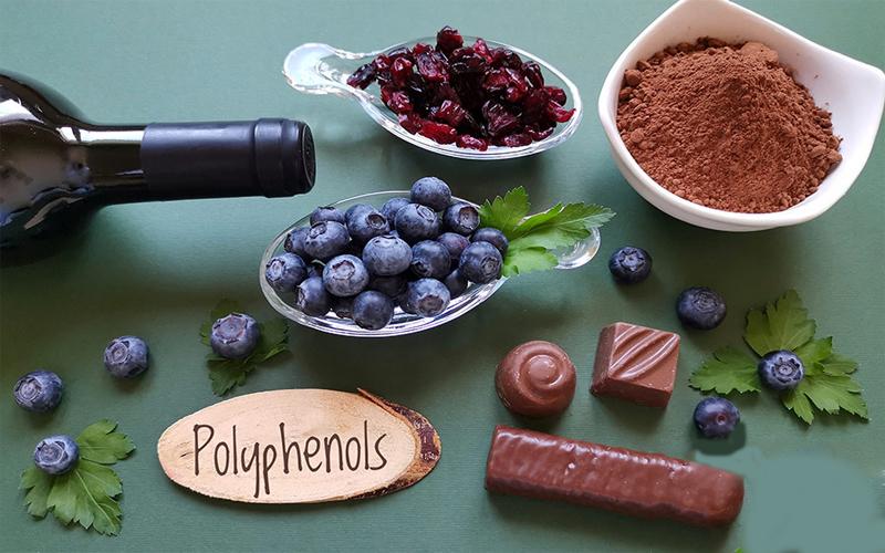 Polyphenol là gì?