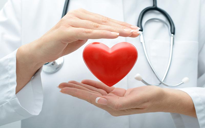 Những lợi ích của polyphenol mang đến cho cơ thể người