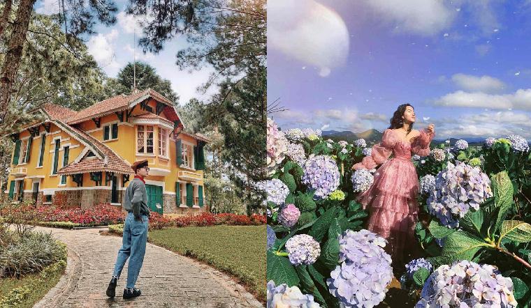 Bạn đã biết 5 địa điểm chụp ảnh Tết 'sang, xịn, mịn' này tại Đà Lạt chưa?