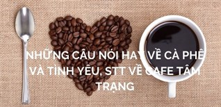 Những câu nói hay về cà phê và tình yêu, stt về cafe tâm trạng