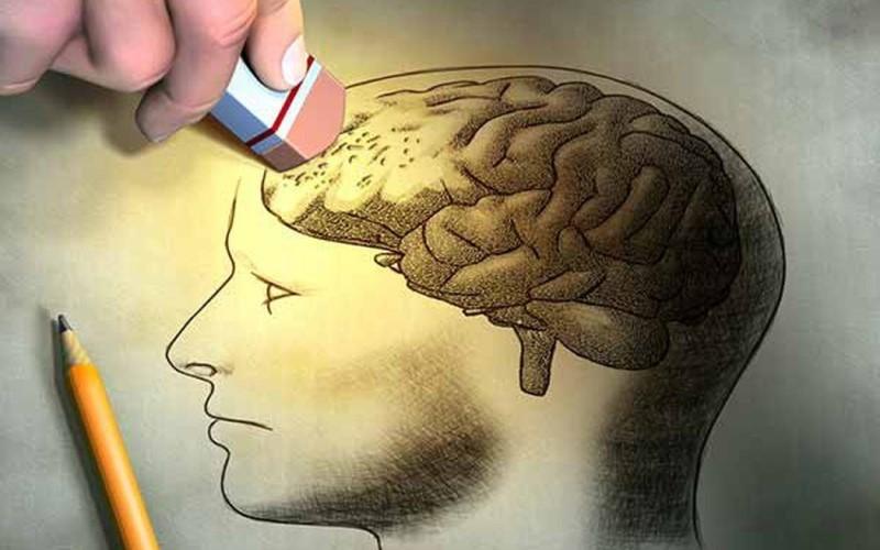 Cá chình cung cấp thiamine và vitamin B1 ngăn ngừa bệnh suy giảm trí nhớ