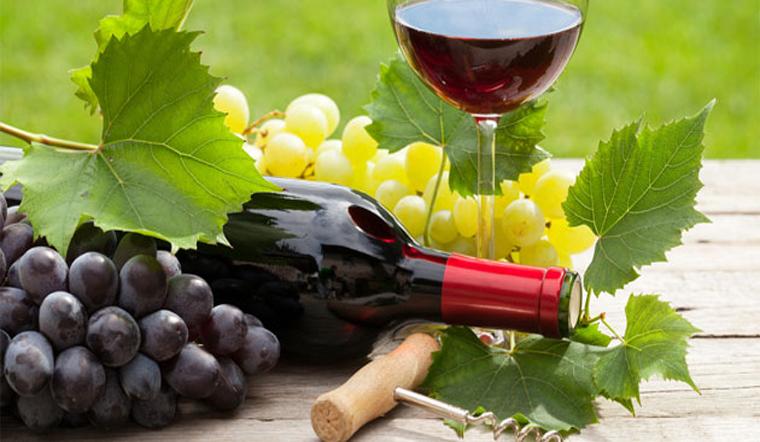 Bảo quản rượu vang đúng cách, nghe thì tưởng dễ nhưng lại khó
