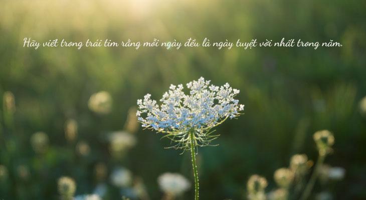Lời nói hồn nhiên, lạc quan