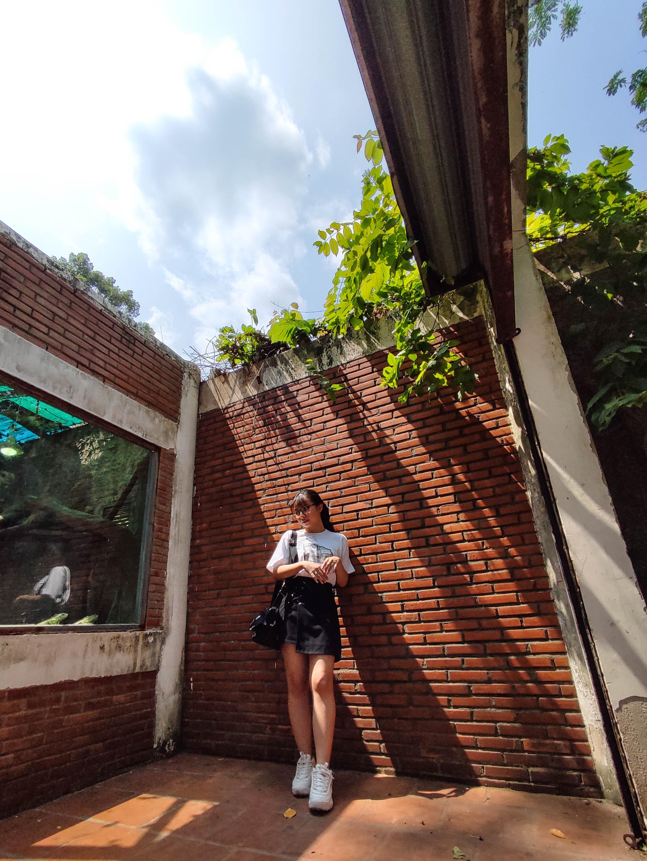 Photo taken using wide-angle mode on Xiaomi Mi 11 Lite