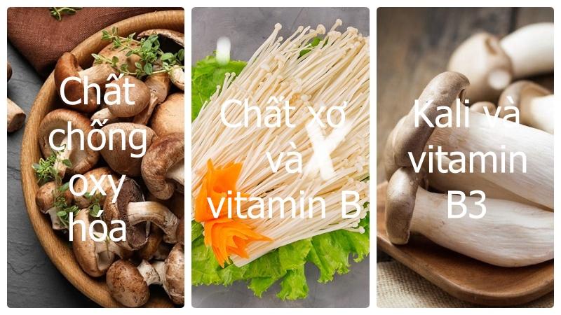 Có những chất dinh dưỡng nào trong nấm