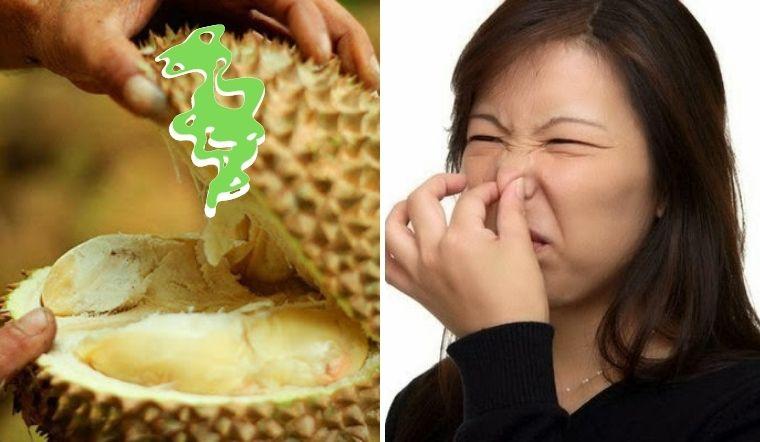 Không thể tin nổi mùi sầu riêng là mùi của tất bẩn, rác thải và thịt thối?