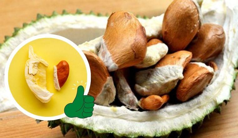 Ăn sầu riêng vứt hạt là bạn đã lãng phí món ăn vừa ngon vừa dinh dưỡng