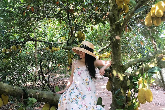 Vườn trái cây Vĩnh Kim là một trong những vườn trái cây nổi tiếng tại Tiền Giang