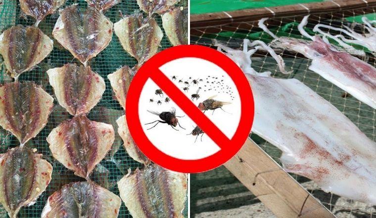 Mẹo phơi cá khô ruồi chẳng dám bén mảng tới, lại còn tăng vị ngon nhờ xịt thêm 'nước' này
