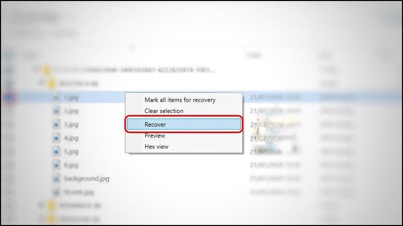 Bước 3: Chọn thư mục/file cần khôi phục. Nháy chuột trái vào file, cuối cùng chọn Recover.