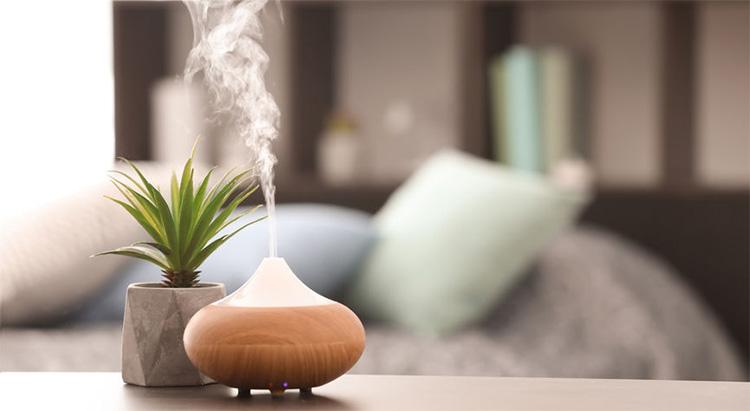 Khử mùi hiệu quả, giúp thanh lọc không khí