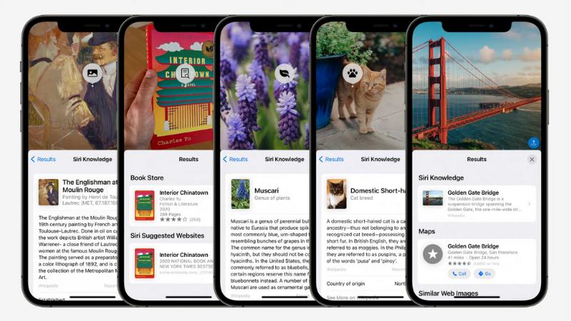 Tính năng Live Text được Apple giới thiệu có thể nhận diện các loại sách, thú cưng, loài hoa, danh lam thắng cảnh,...