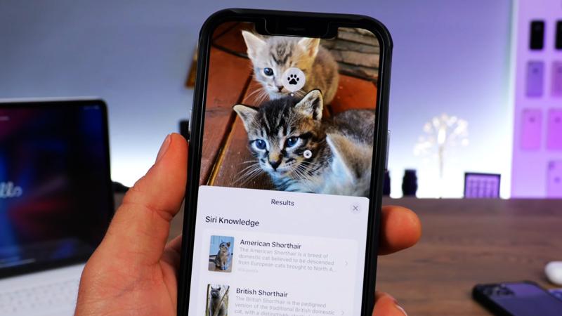 Cach-dung-tinh-nang-Live-Text-tren-iPhone