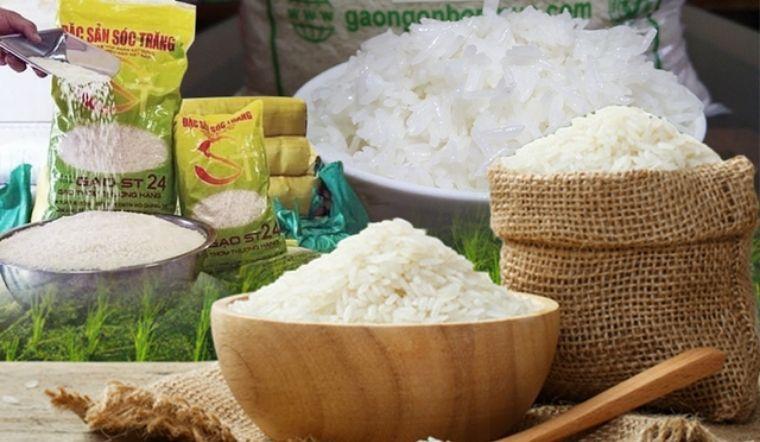 So sánh gạo ST24 và ST25, nội trợ cần biết để lựa gạo ngon cho gia đình