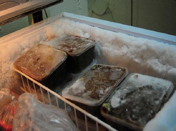 Tủ đông bị bám tuyết