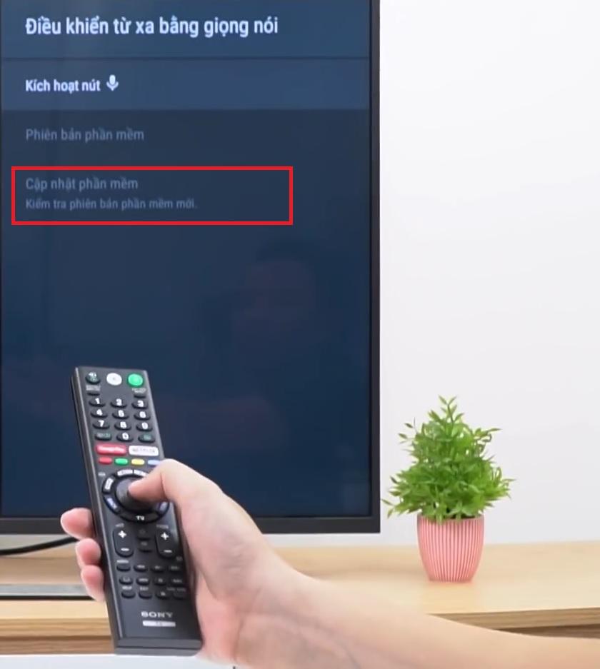 Cập nhật phần mềm của remote