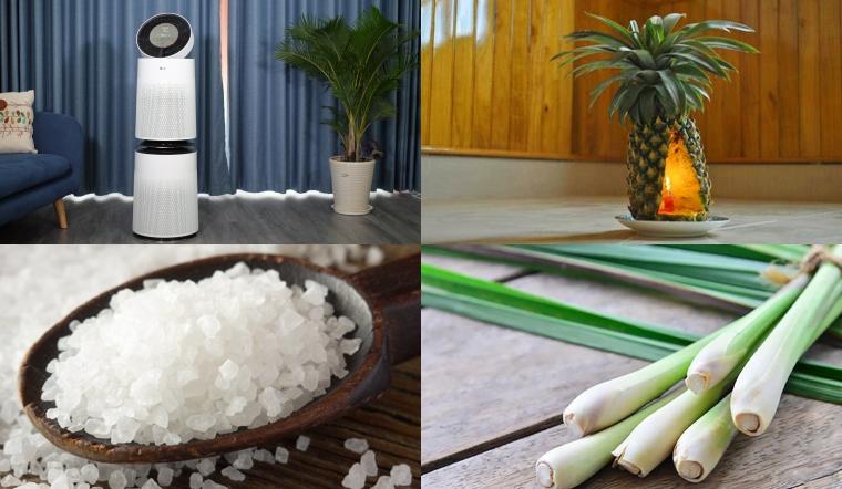 20 cách khử mùi hôi, ẩm mốc trong nhà đơn giản, hiệu quả