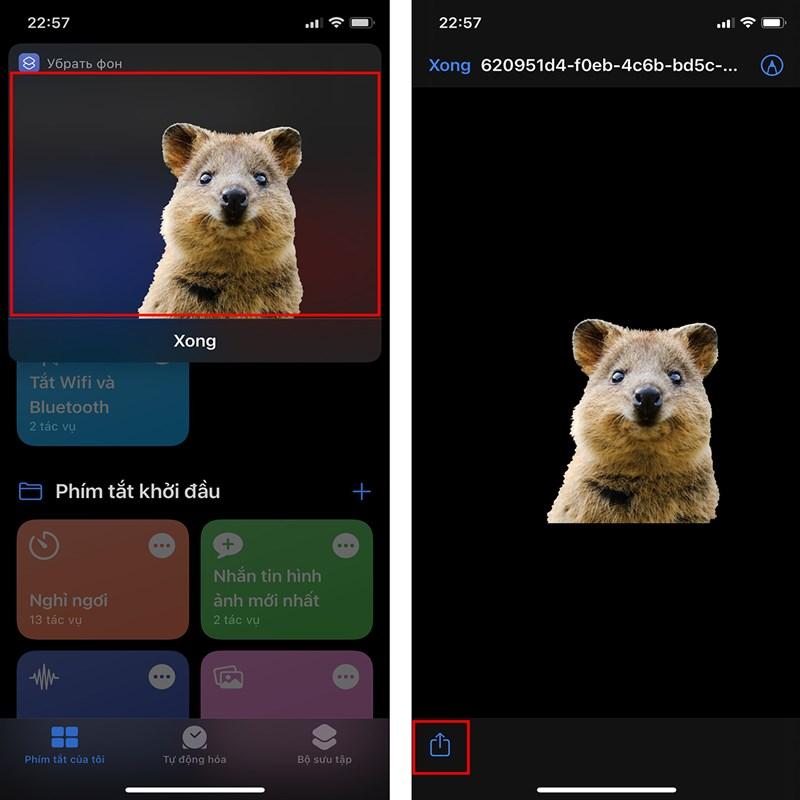 Cách tách nền ảnh bằng iPhone-4