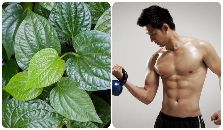 4 cách cải thiện sinh lý cho nam giới đơn giản bằng lá lốt