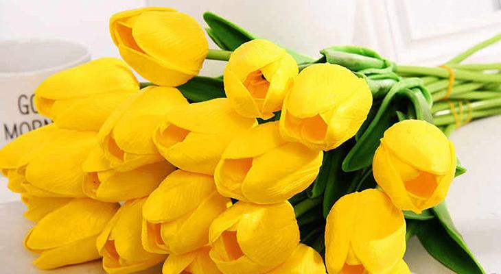 Không nên tặng hoa tulip vàng trong dịp sinh nhật bạn gái