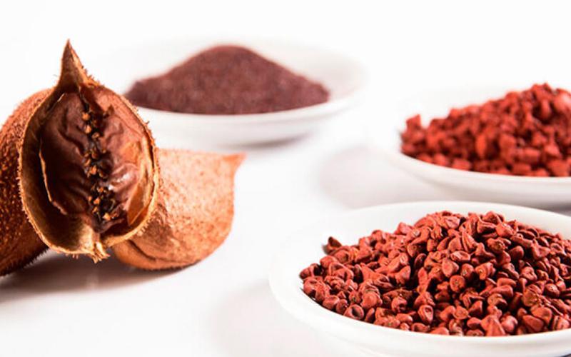 Hạt điều đỏ (hạt cà ri) là nguyên liệu chính để làm màu dầu điều đỏ