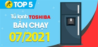 Top 5 Tủ lạnh Toshiba bán chạy nhất tháng 7/2021 tại Điện máy XANH