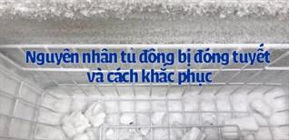 Nguyên nhân tủ đông bị đóng tuyết và cách khắc phục hiệu quả
