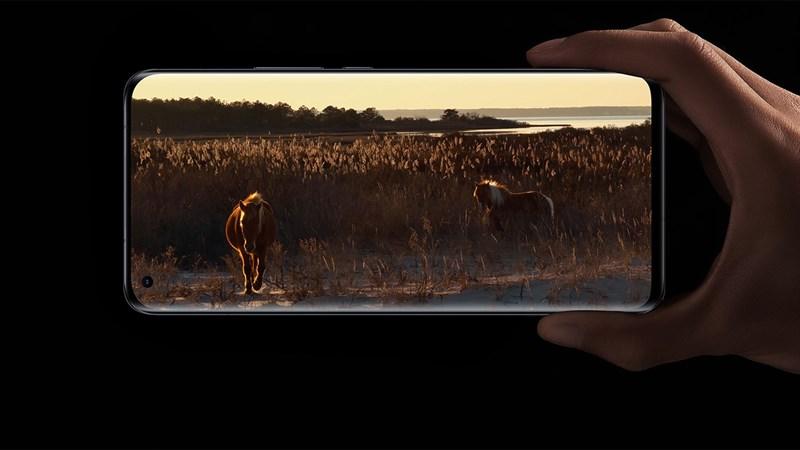 Xiaomi Mi 11T giá bao nhiêu