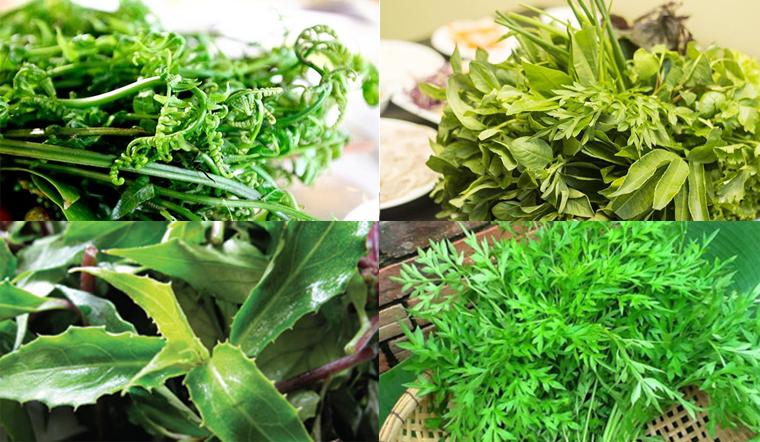 Tổng hợp 15 loại rau rừng ngon và phổ biến nhất ở Việt Nam
