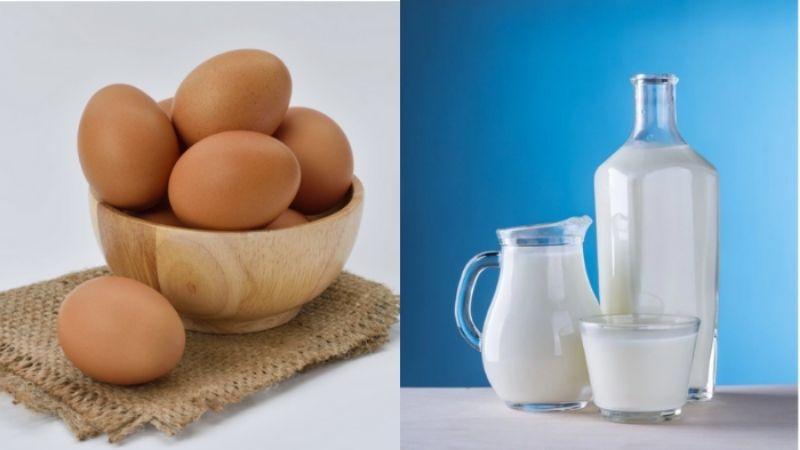 Trứng và sữa có phải thực phẩm chay?