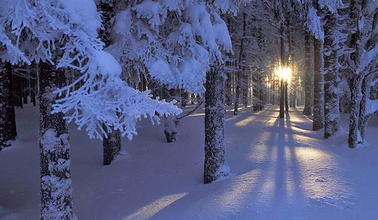 Tổng hợp những bài thơ, câu nói, caption, status hay và ý nghĩa về mùa đông