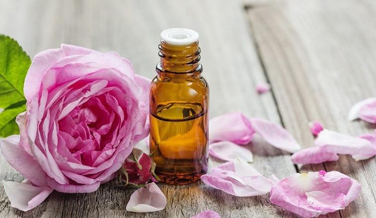 Tinh dầu hoa hồng là gì? Lợi ích của tinh dầu hoa hồng và cách sử dụng?