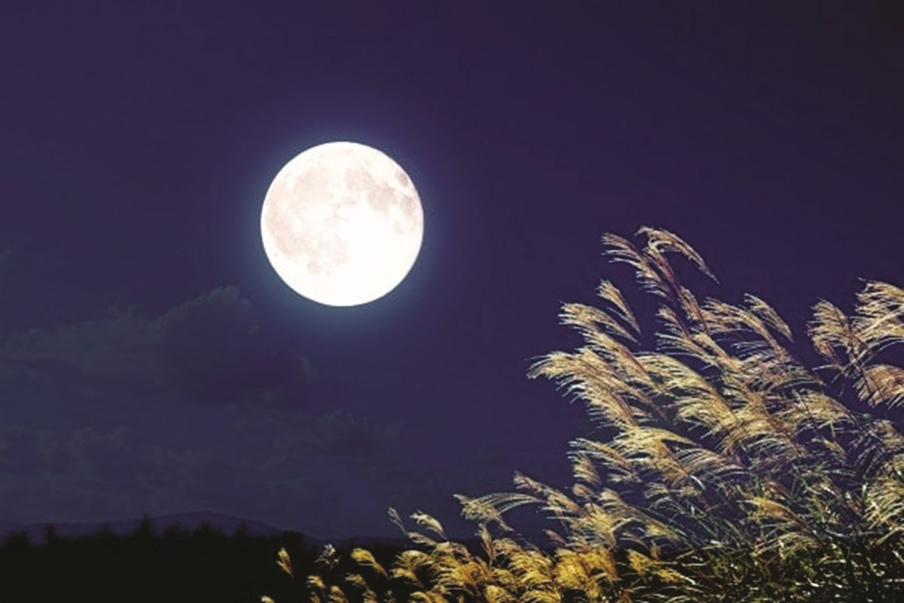 Đêm rằm tháng tám