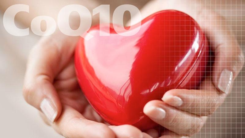 CoQ10 hỗ trợ bảo vệ tim mạch