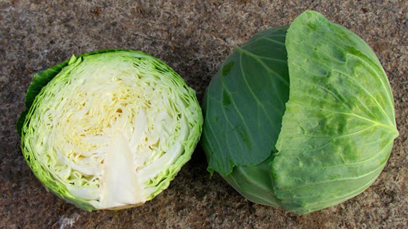 Bắp cải là thực phẩm chứa nhiều dinh dưỡng tốt cho sức khỏe