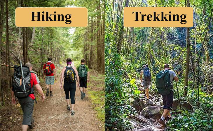 Phân biệt giữa đi bộ đường dài và đi bộ xuyên rừng