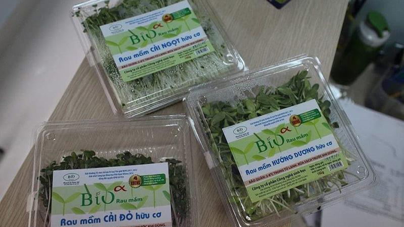 Chọn mua rau mầm được đóng hộp sạch sẽ, nguồn gốc rõ ràng