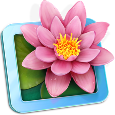 LilyView - Phần mềm xem ảnh trên MacBook gọn, nhẹ