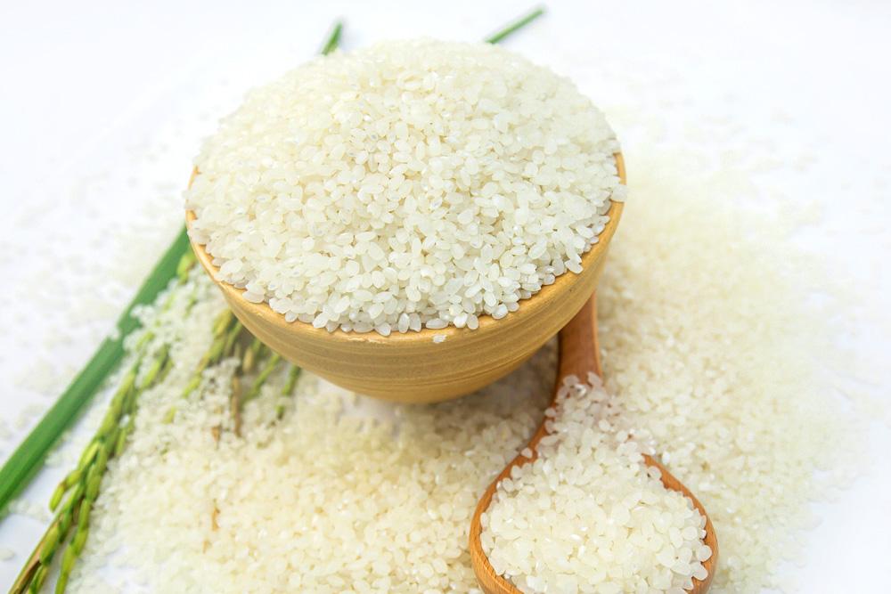 Gạo giống Nhật Vinh hiển Taiyo hạt tròn