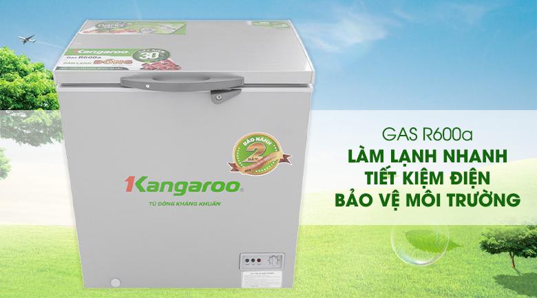 Gas R600a - Tủ đông Kangaroo KG235VC1