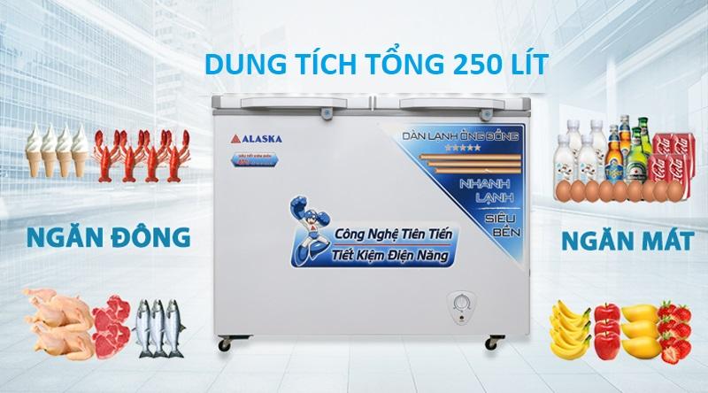 Thiết kế - Tủ đông Alaska 250 lít BCD-3068C