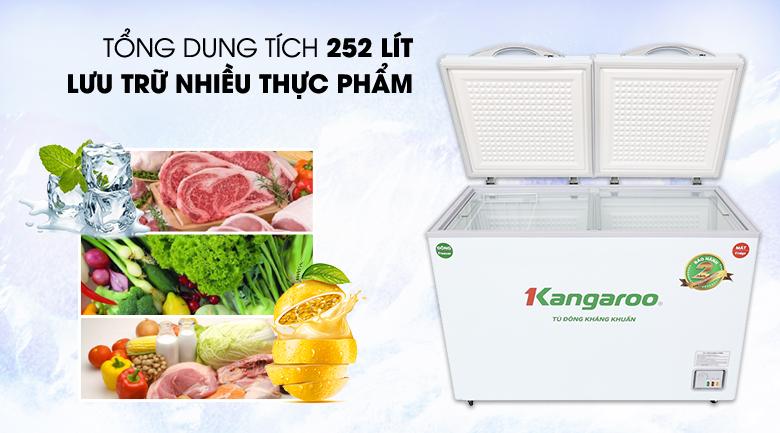 Tủ đông Kangaroo 252 lít KG 400NC2 - Dung tích 252 lít, phù hợp cho hộ kinh doanh quy mô nhỏ