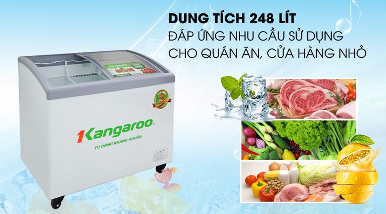 Tủ đông Kangaroo 248 lít KG308C1 - Dung tích 248 lít, phù hợp với hộ gia đình kinh doanh quán ăn, cửa hàng nhỏ