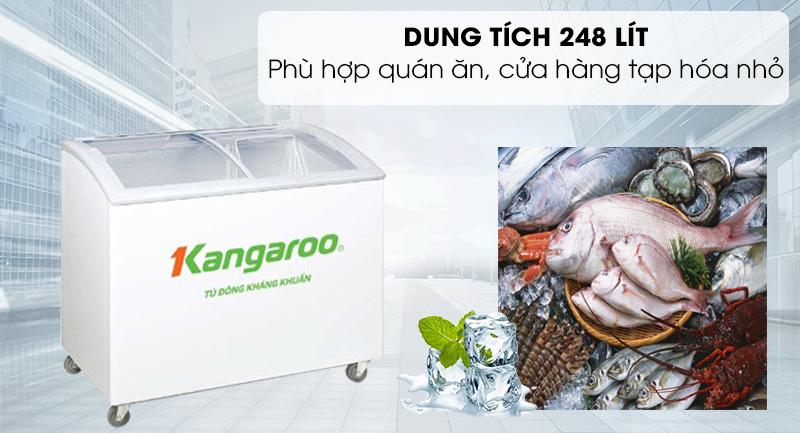 Tủ đông Kangaroo 248 lít KG308C1-Dung tích 248 lít, phù hợp với hộ gia đình kinh doanh quán ăn, cửa hàng nhỏ