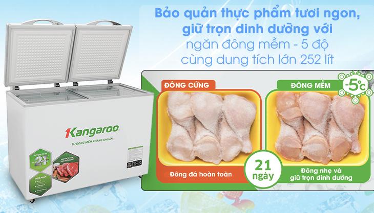 Nhiệt độ ngăn đông mềm - Tủ đông mềm Kangaroo 252 lít KG 408S2