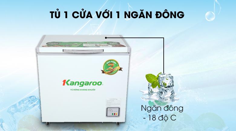 Tủ đông Kangaroo 140 lít KG 265NC1 - Số ngăn