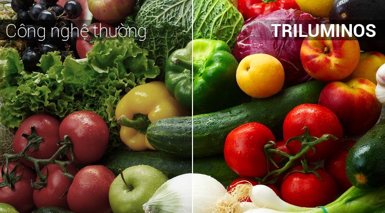 Công nghệ TRILUMINOS Display của Android Tivi Sony 4K 43 inch KD-43X8500F/S